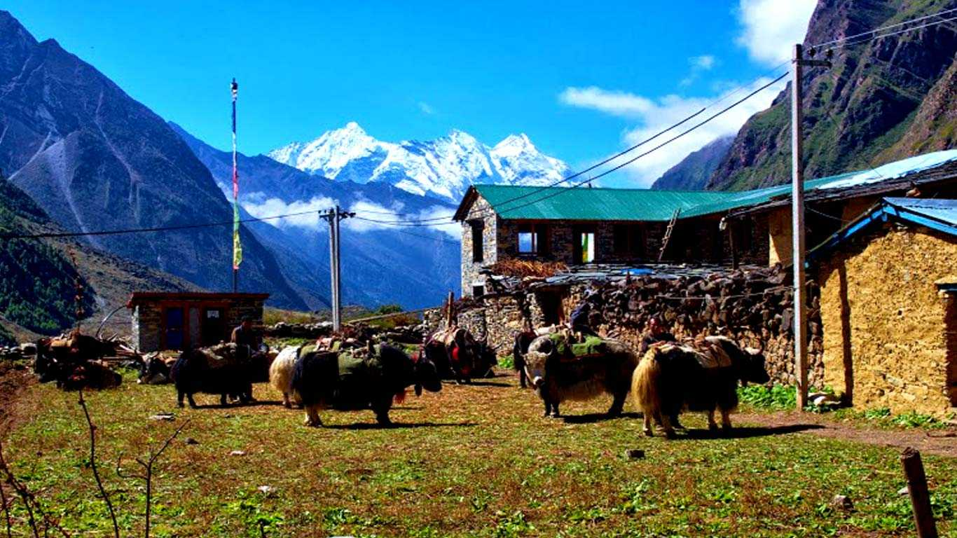 Major Reasons to Trek to the Tsum Valley