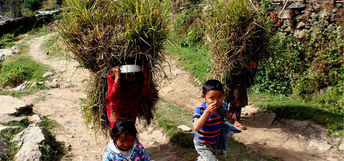 COVID - 19 and Tourism in Nepal