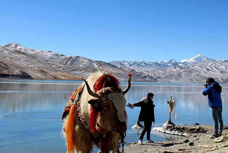 Nepal Tibet Overland Tour (Drive in - Drive out)